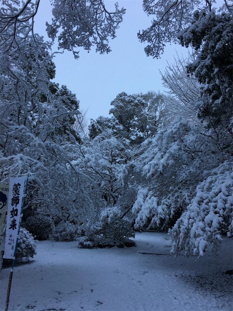 f:id:yuuki-houjyuin:20170115211930j:image