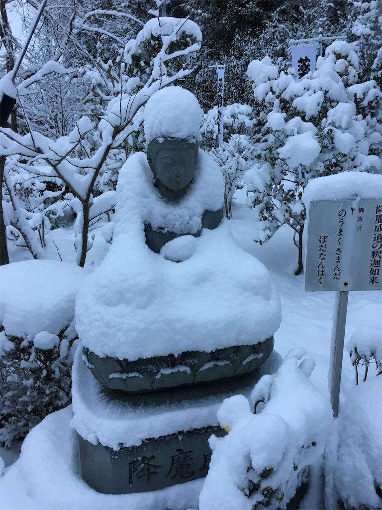 f:id:yuuki-houjyuin:20170115212355j:image