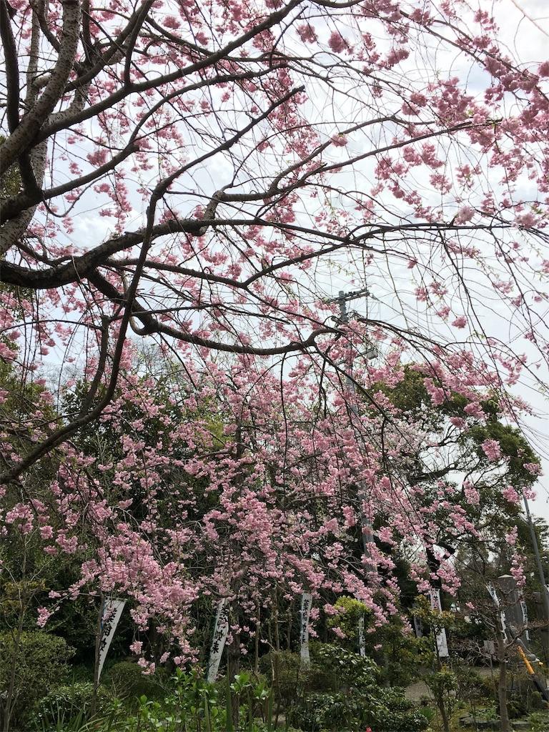f:id:yuuki-houjyuin:20170409172146j:image