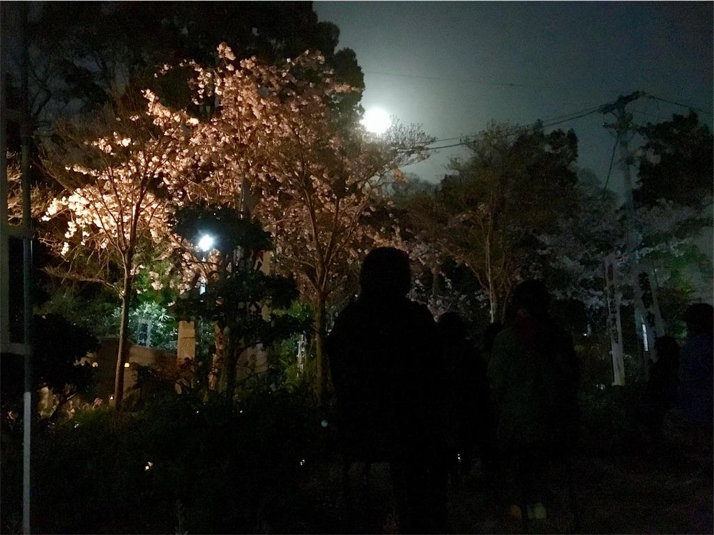 f:id:yuuki-houjyuin:20180402121107j:image
