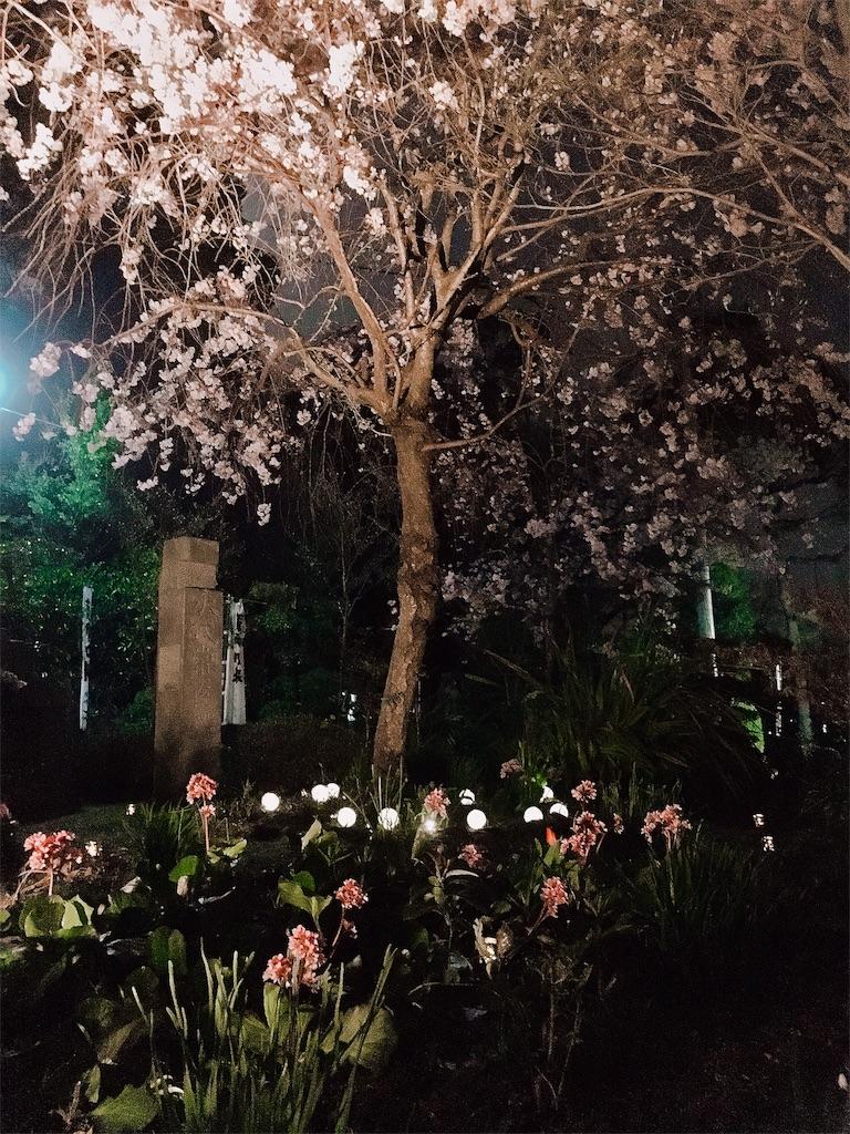 f:id:yuuki-houjyuin:20180402122027j:image