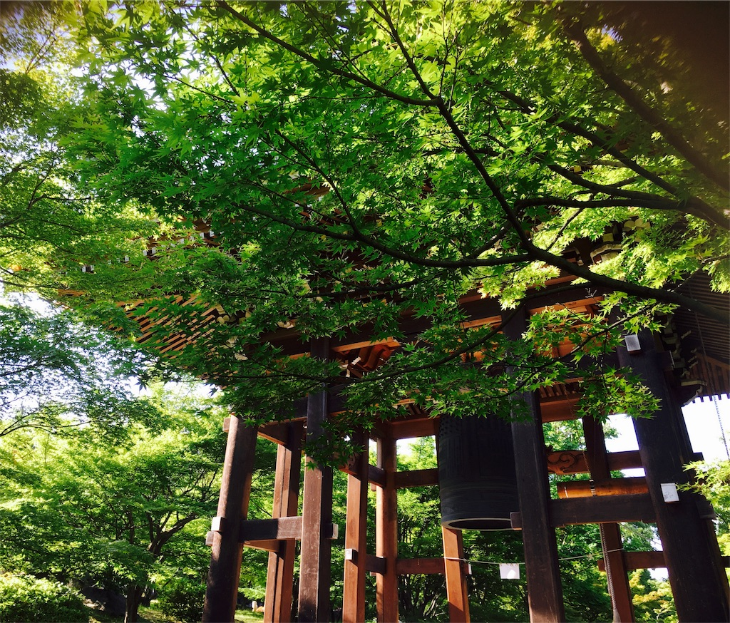 f:id:yuuki-houjyuin:20180529065833j:image
