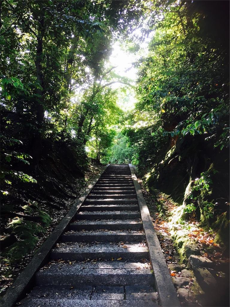 f:id:yuuki-houjyuin:20180529070341j:image