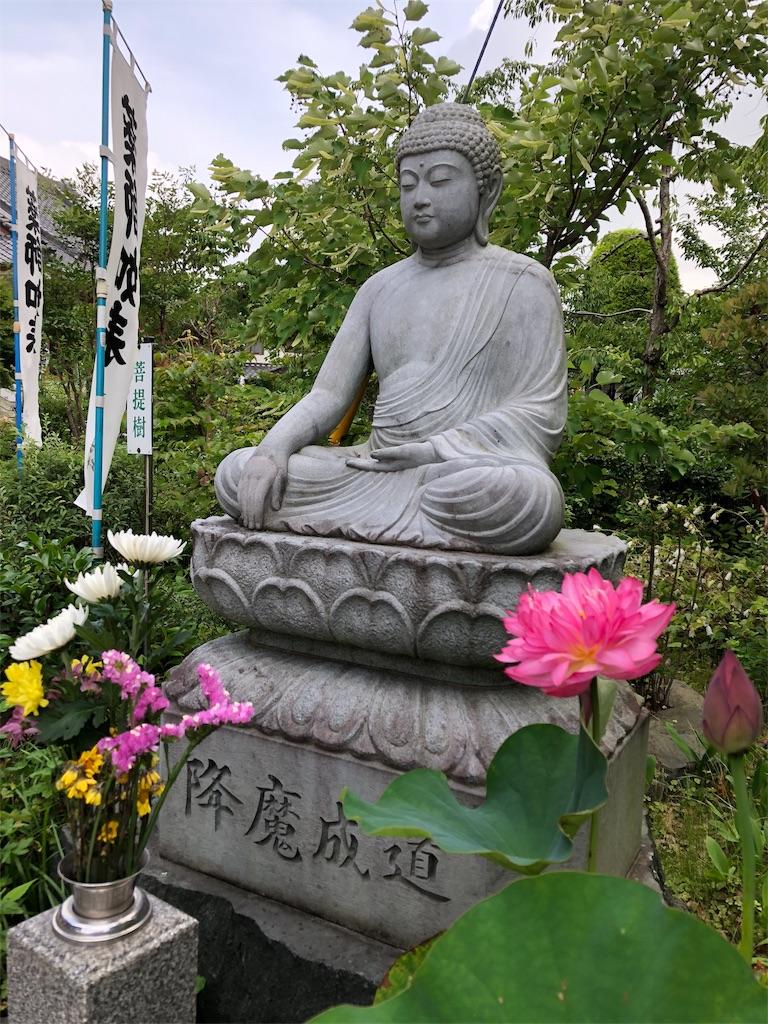 f:id:yuuki-houjyuin:20180710201107j:image