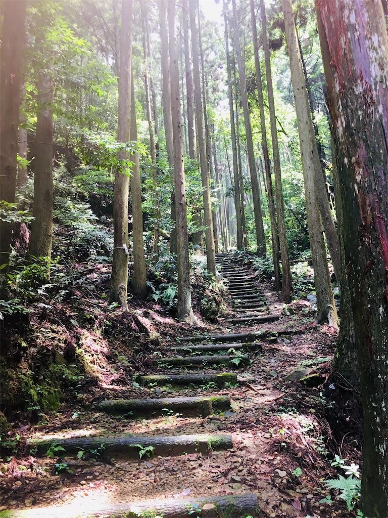 f:id:yuuki-houjyuin:20190713191133j:image