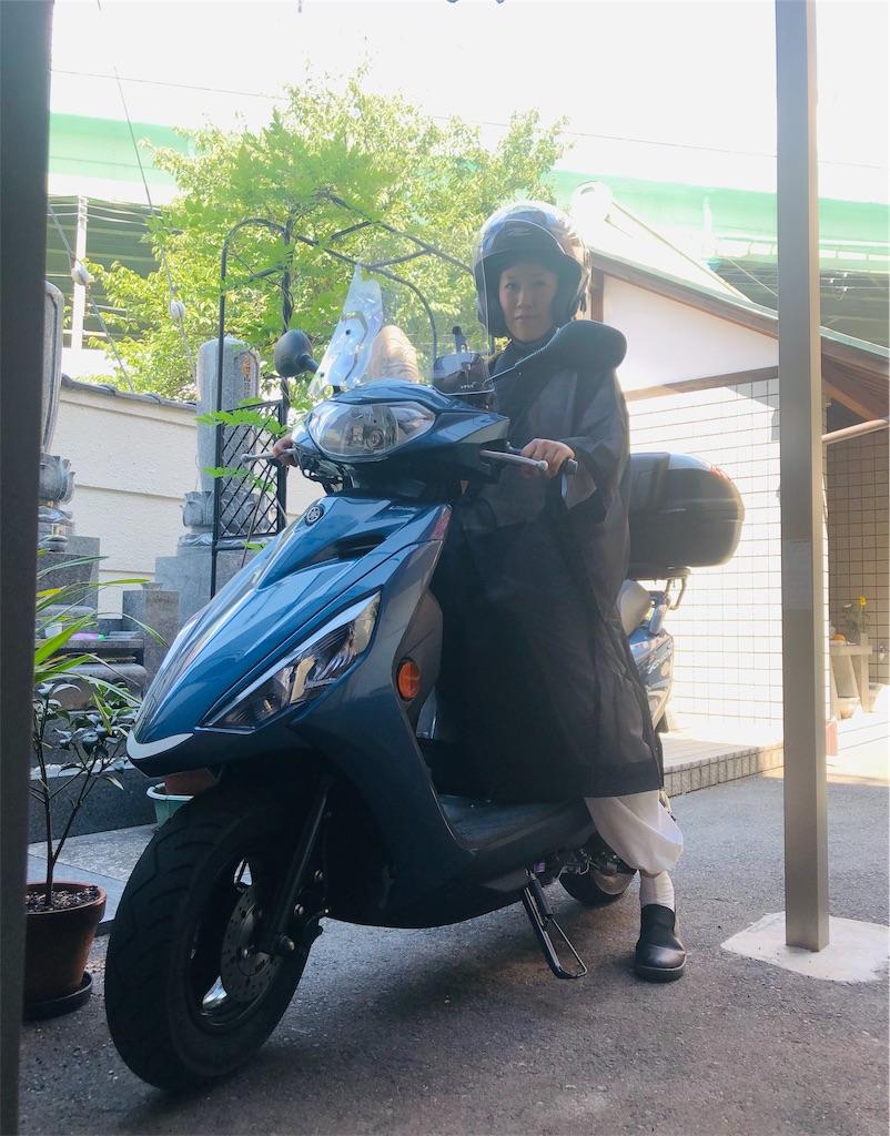 f:id:yuuki-houjyuin:20190811170042j:image