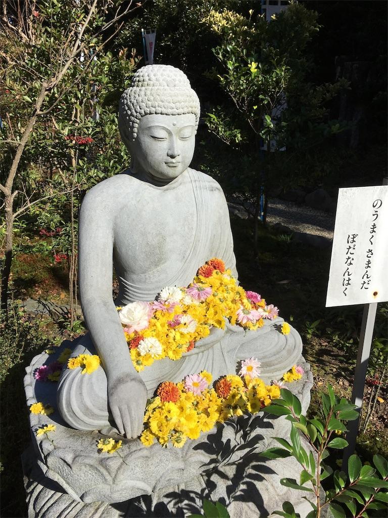 f:id:yuuki-houjyuin:20200210210724j:image