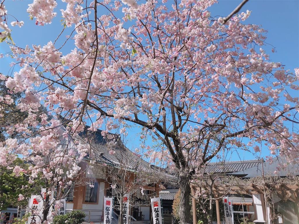 f:id:yuuki-houjyuin:20200411063617j:image