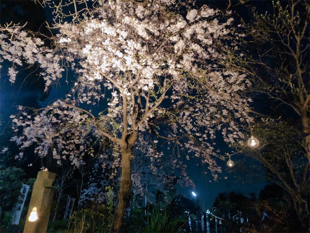 f:id:yuuki-houjyuin:20200411063621j:image