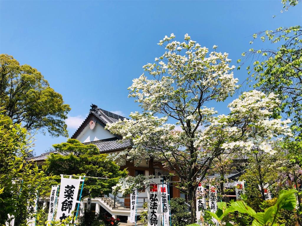f:id:yuuki-houjyuin:20200427120030j:image