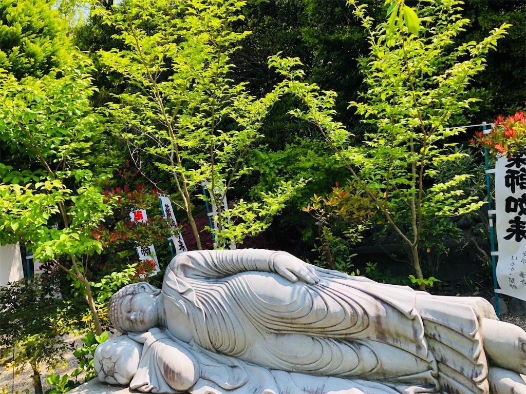 f:id:yuuki-houjyuin:20200427120050j:image