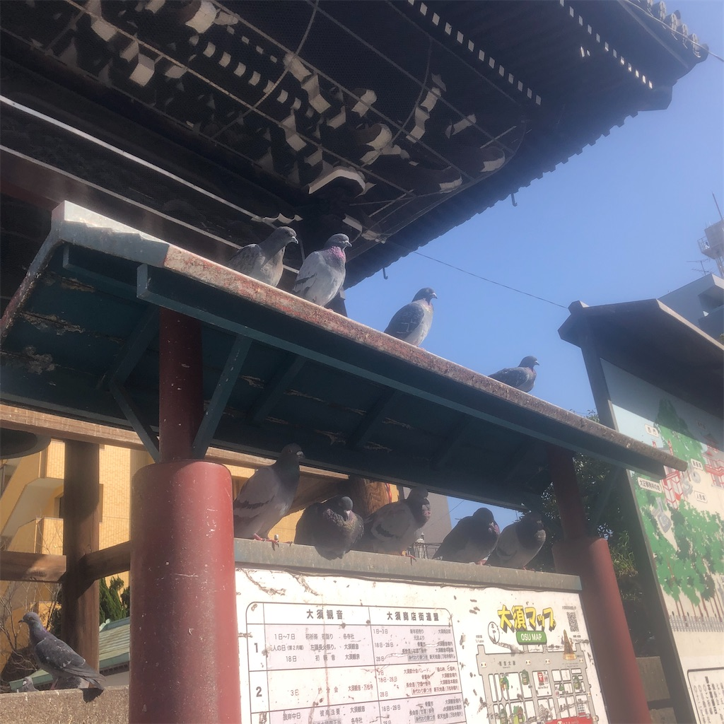 f:id:yuuki-houjyuin:20210318181214j:image