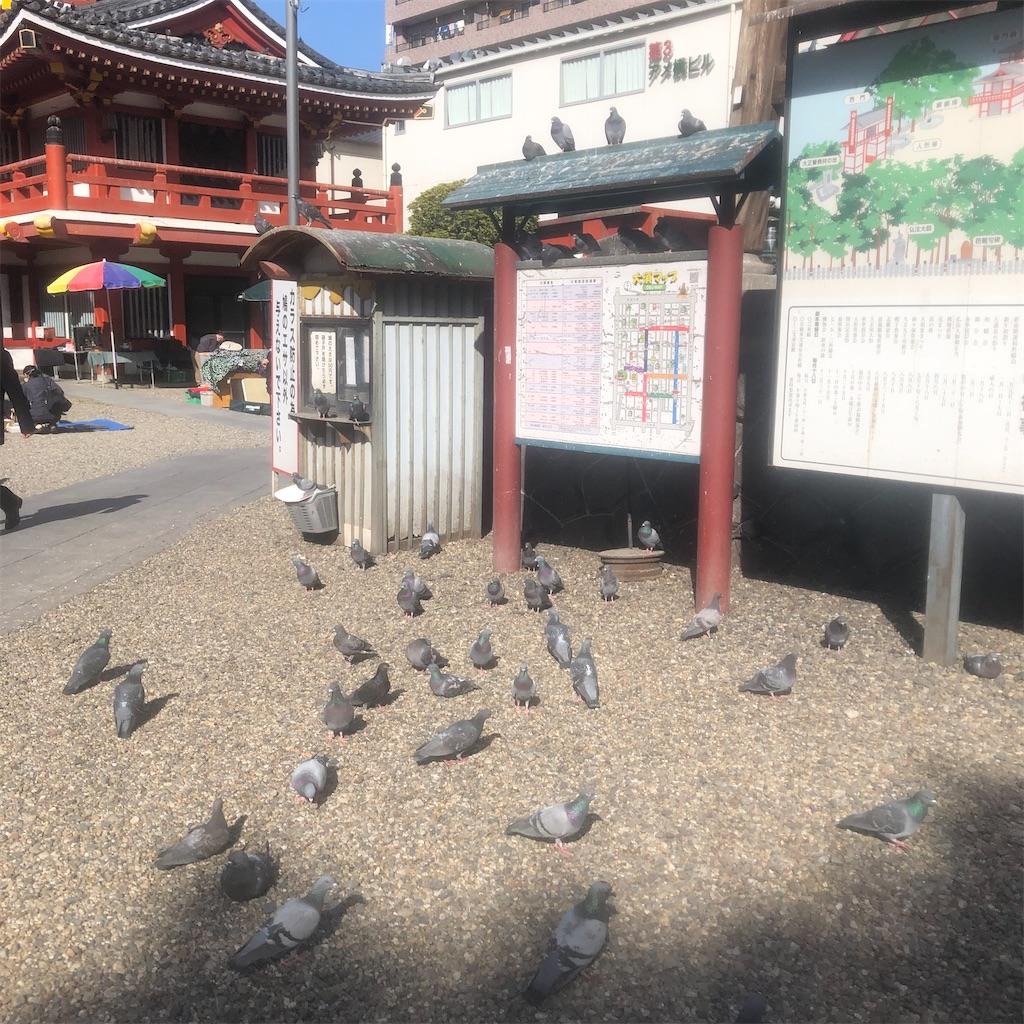 f:id:yuuki-houjyuin:20210318181225j:image