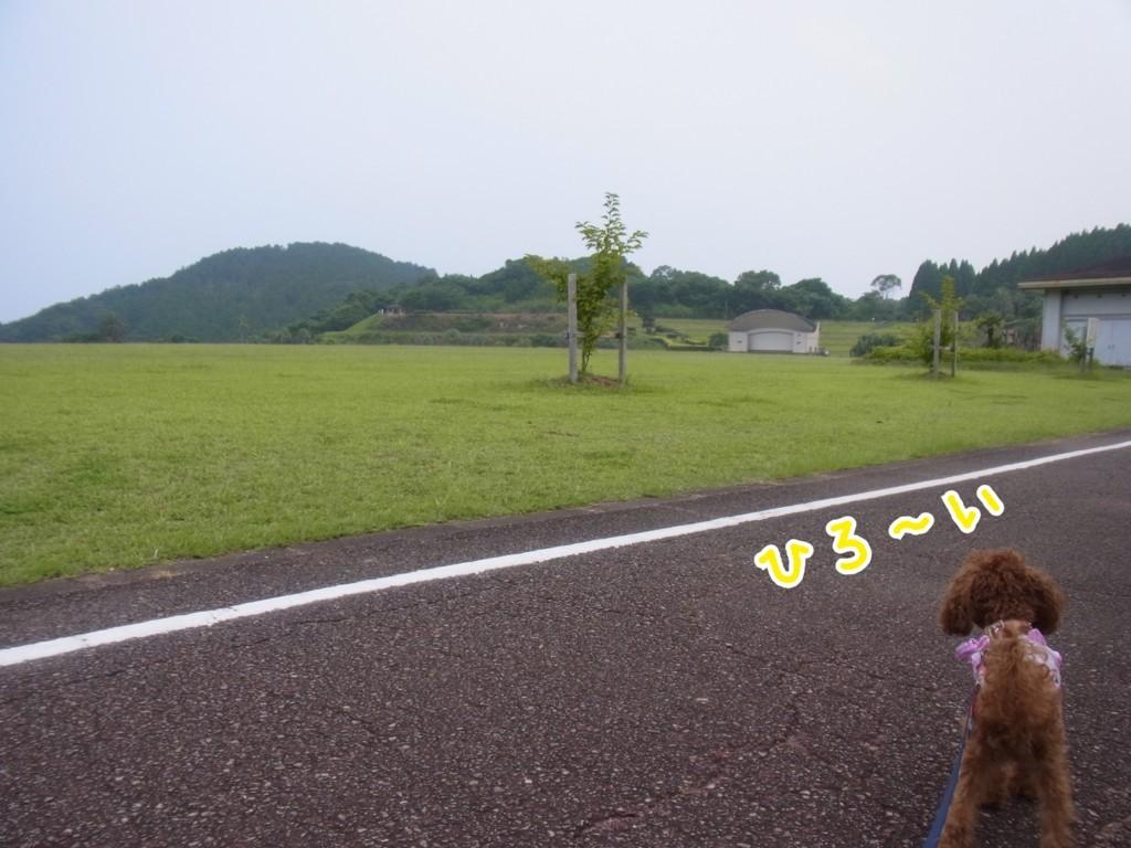 f:id:yuuki-matu1009:20170801153602j:plain