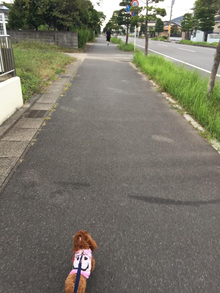f:id:yuuki-matu1009:20170903180630j:plain