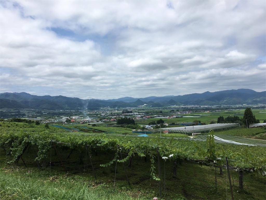 f:id:yuuki-peachtea-0421:20170818213507j:image