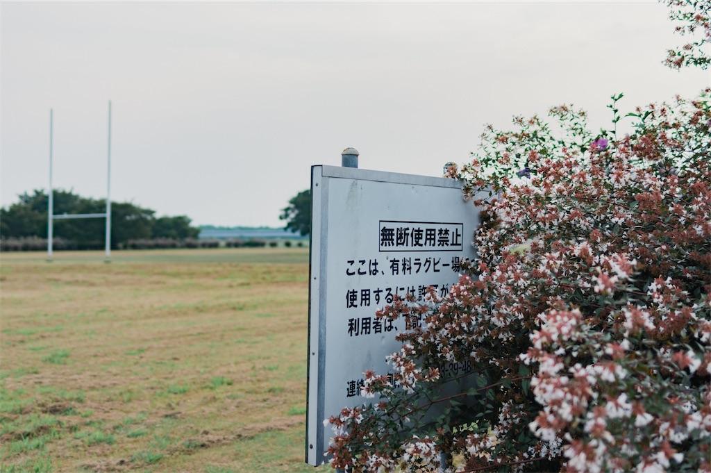 f:id:yuuki167a:20200825164311j:image