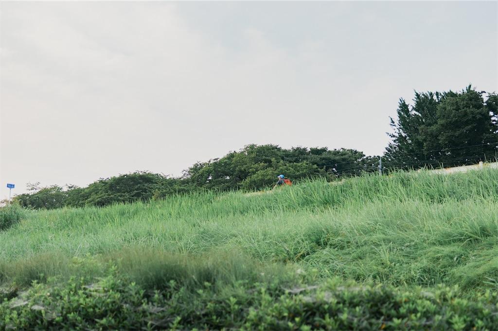 f:id:yuuki167a:20200825164336j:image