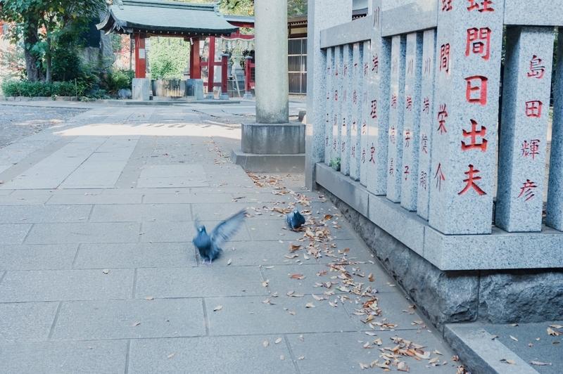 f:id:yuuki167a:20201115223639j:plain