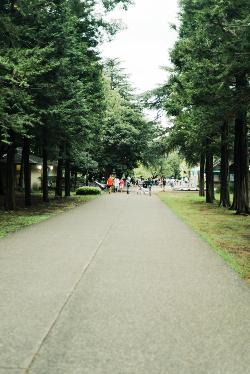 f:id:yuuki167a:20210905210720j:plain