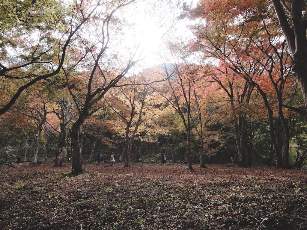 f:id:yuuki89:20181124203600j:image