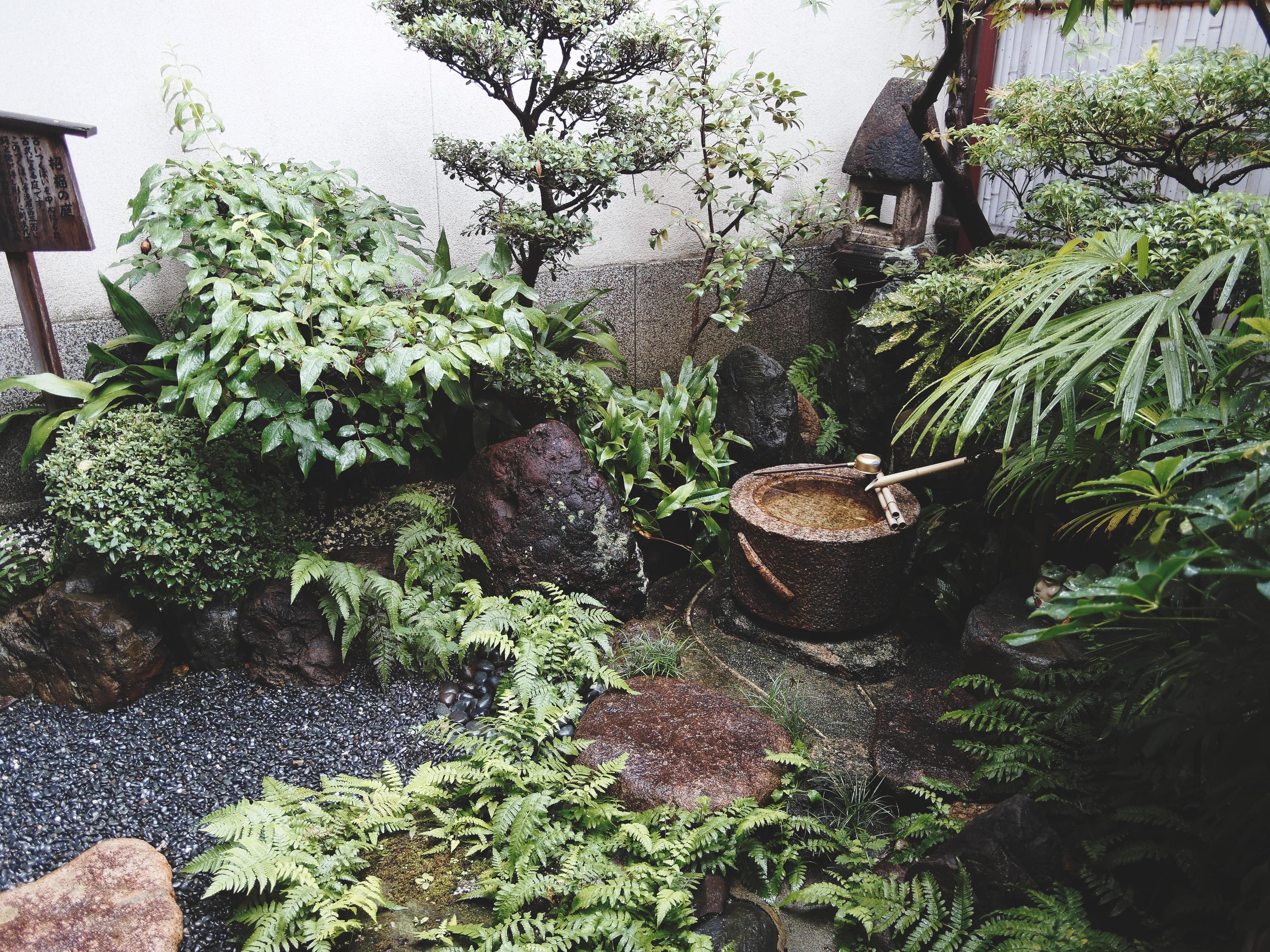 f:id:yuuki89:20190114192200j:image