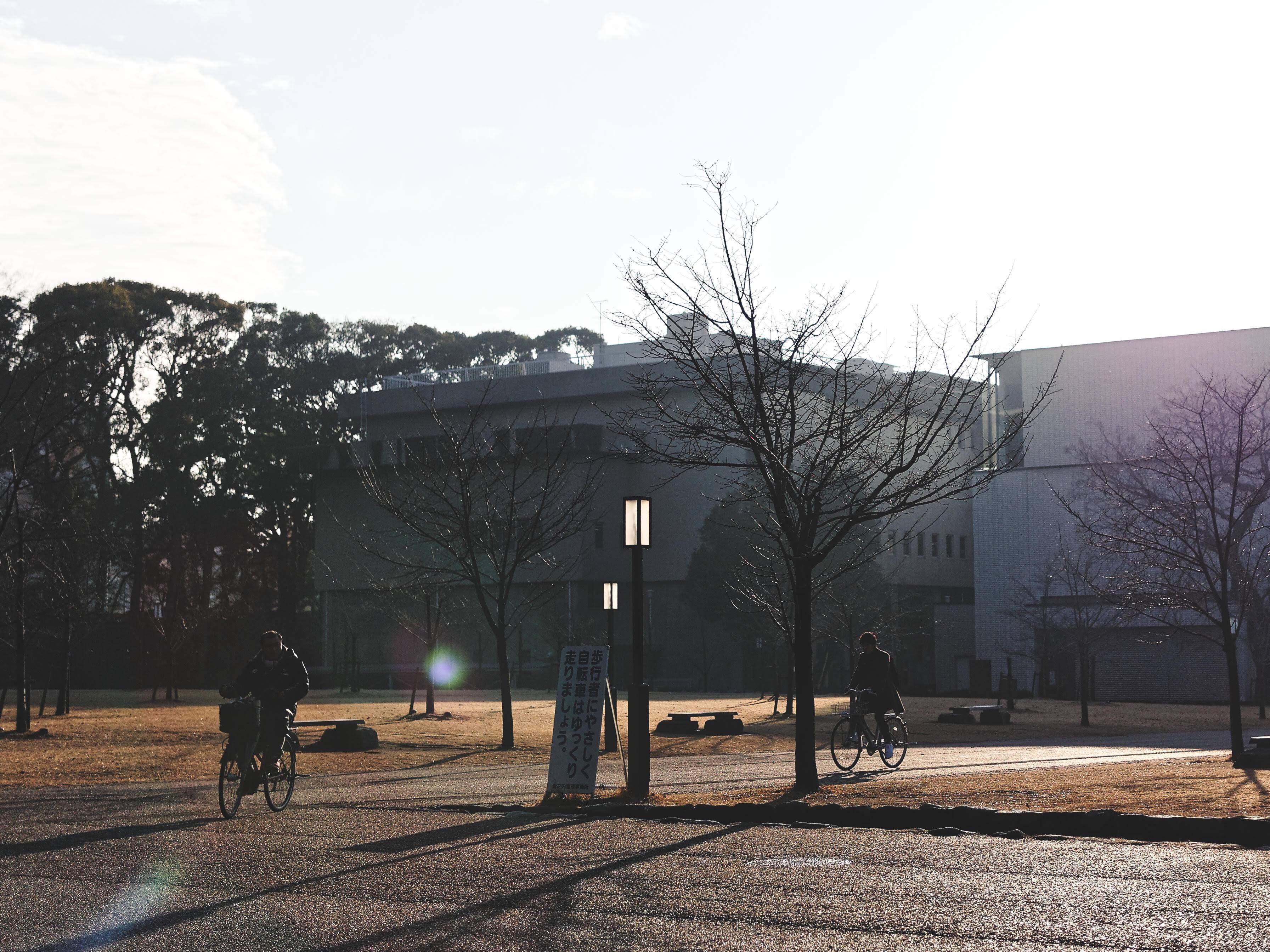 f:id:yuuki89:20190222235037j:image