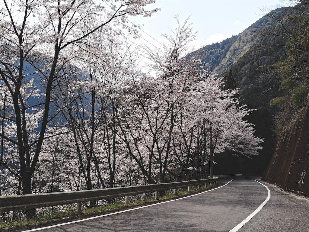 f:id:yuuki89:20190405174228j:image