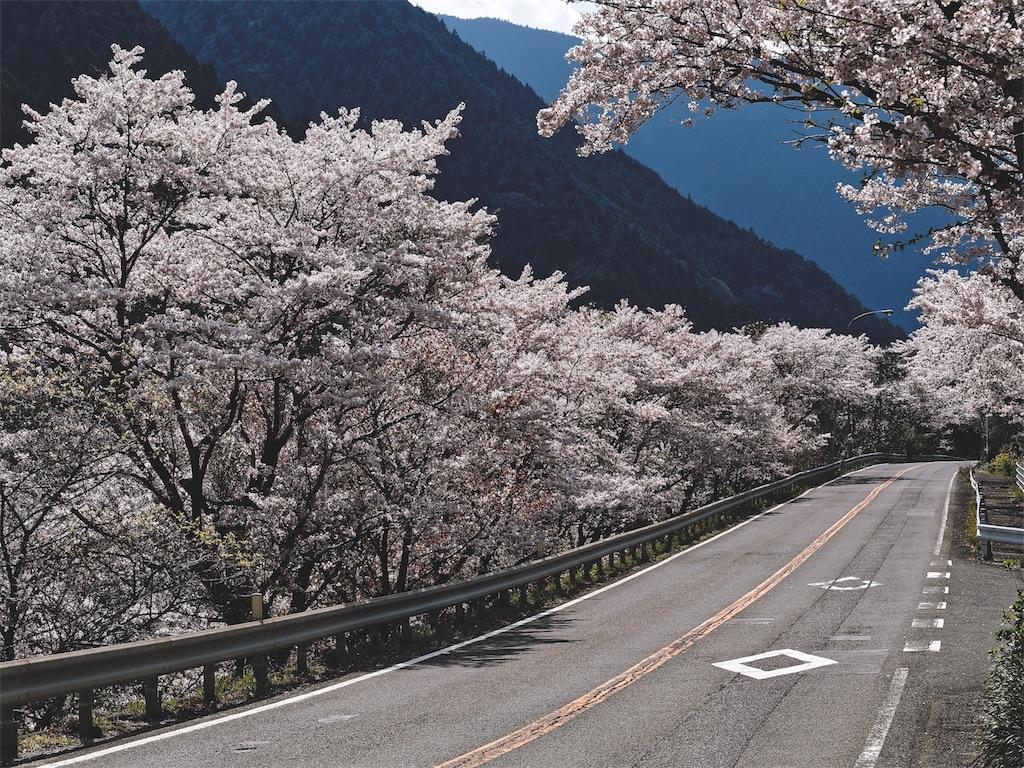 f:id:yuuki89:20190405174956j:image