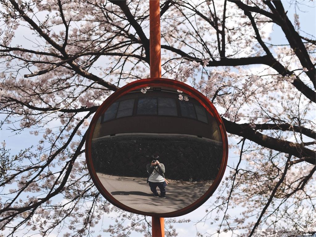 f:id:yuuki89:20190405181357j:image