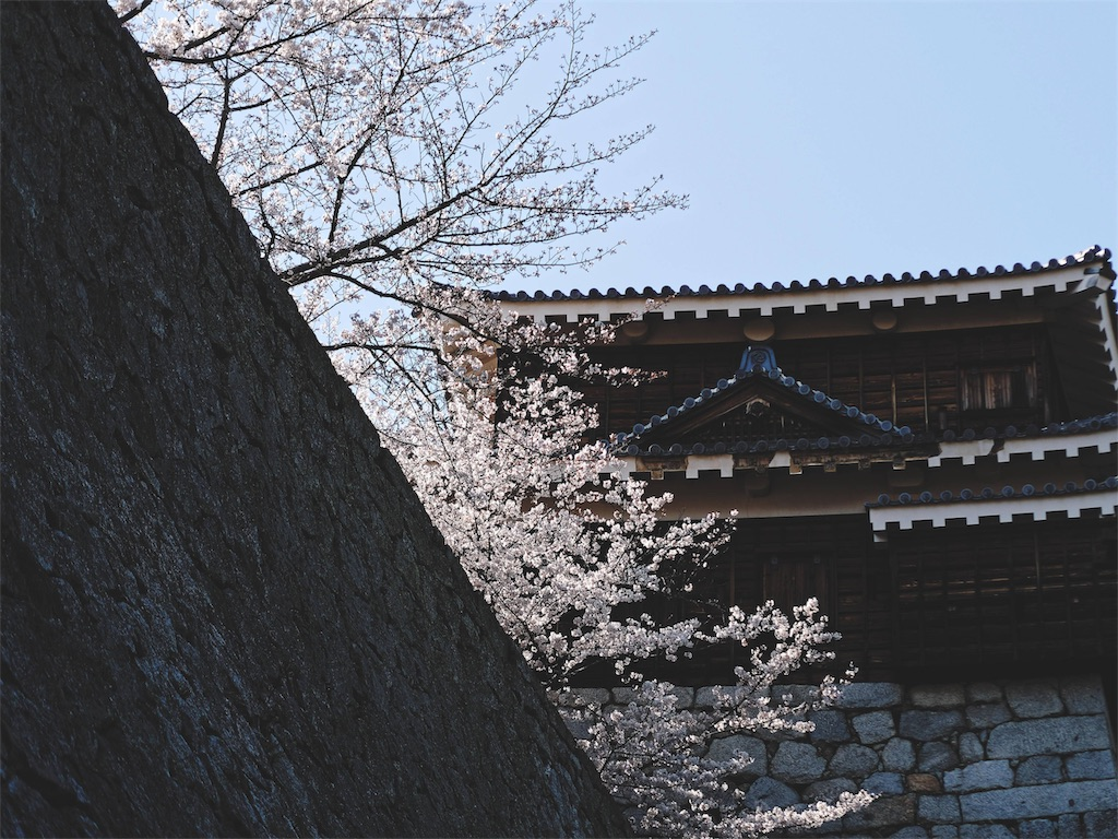 f:id:yuuki89:20190407185038j:image
