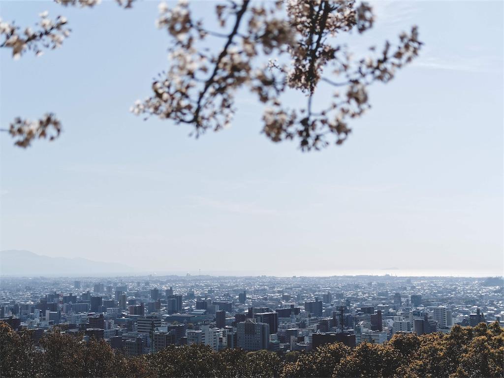f:id:yuuki89:20190407185101j:image