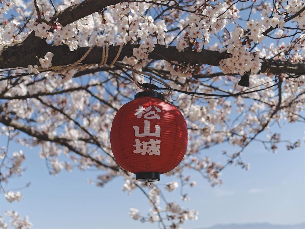 f:id:yuuki89:20190407185606j:image