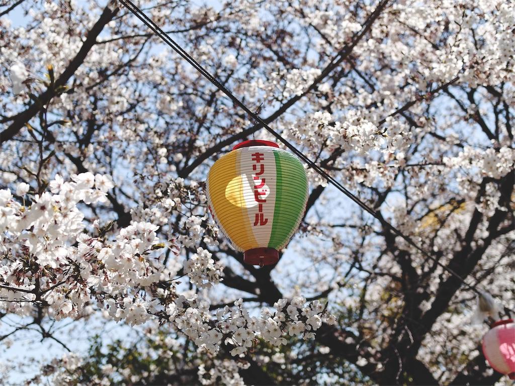 f:id:yuuki89:20190410191629j:image