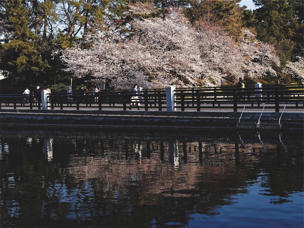 f:id:yuuki89:20190410192150j:image