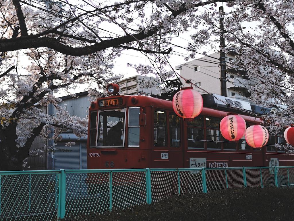 f:id:yuuki89:20190410192630j:image