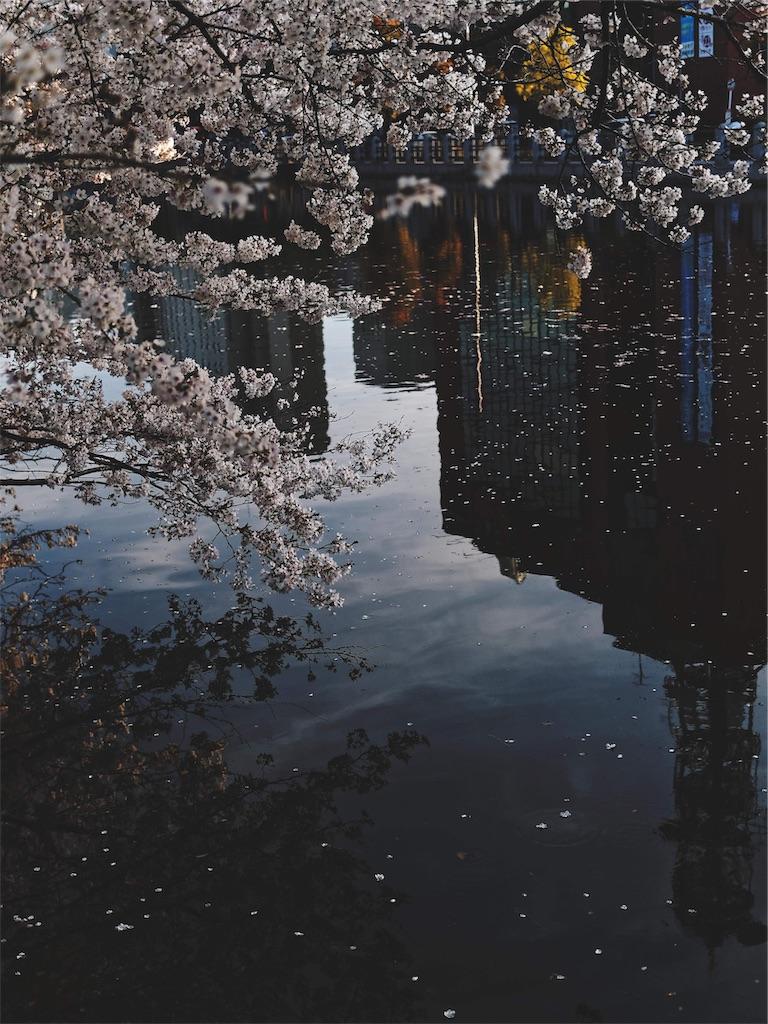 f:id:yuuki89:20190410194154j:image