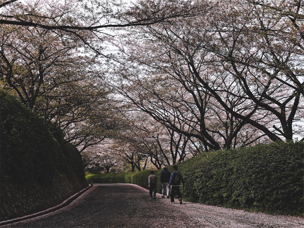 f:id:yuuki89:20190412185238j:image