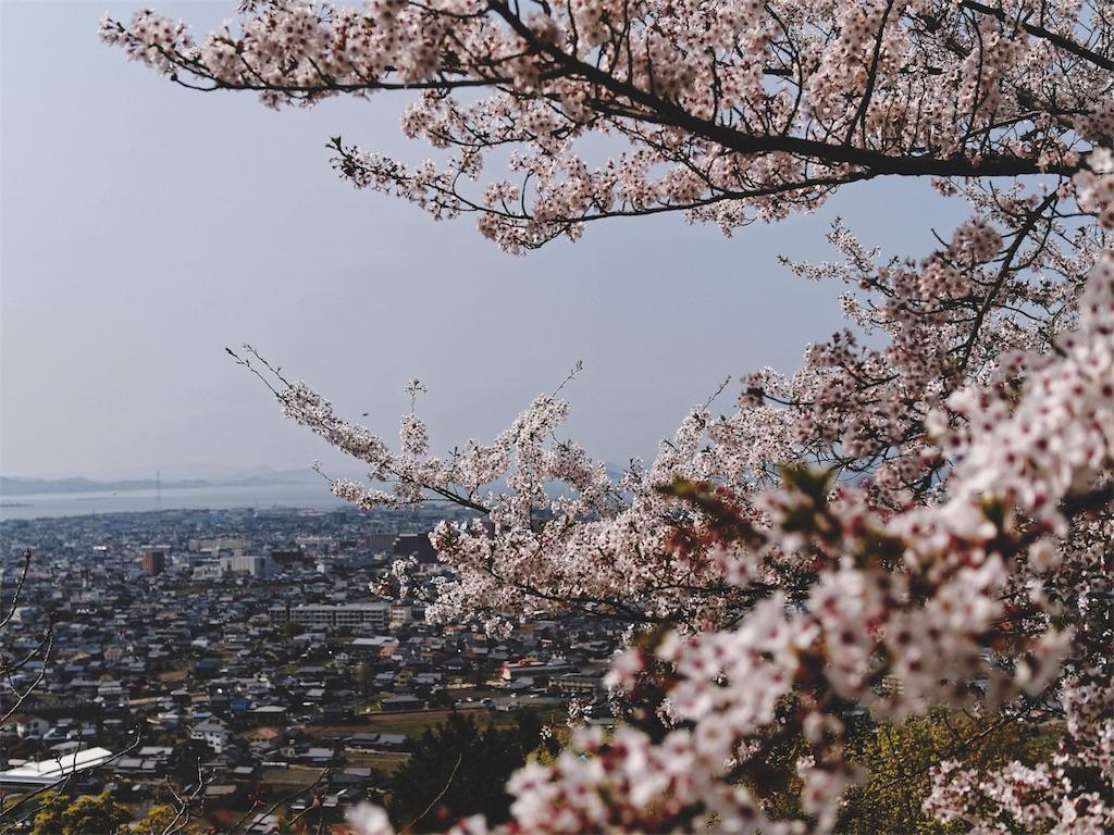 f:id:yuuki89:20190412185250j:image