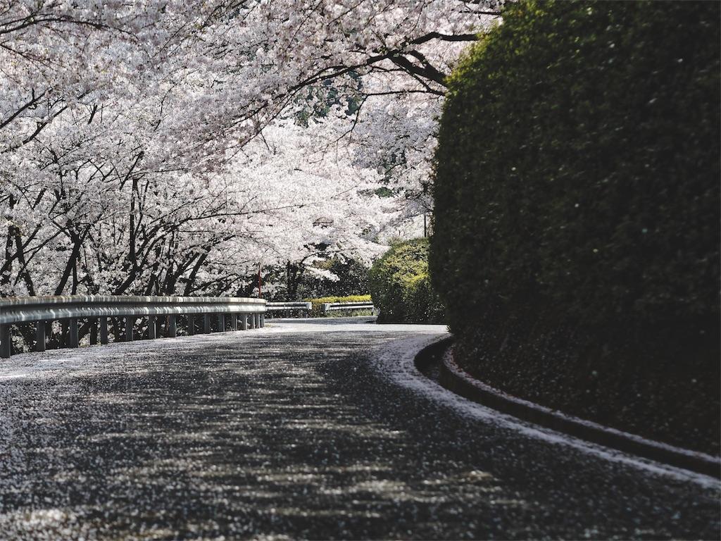 f:id:yuuki89:20190412185419j:image