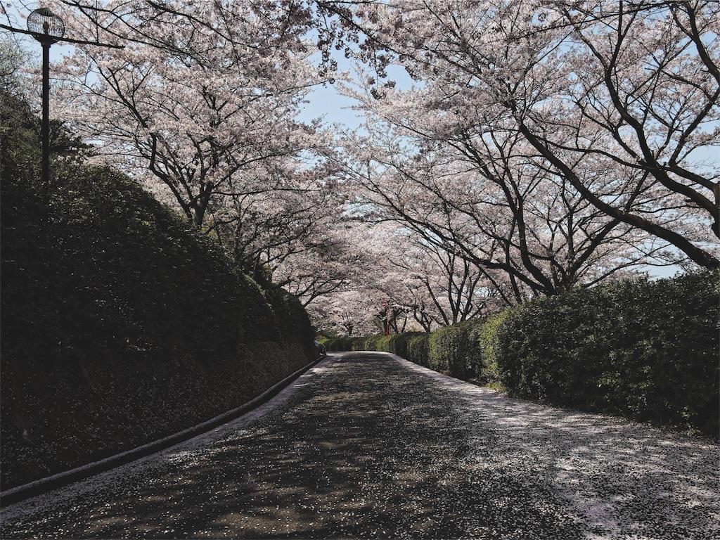 f:id:yuuki89:20190412185425j:image