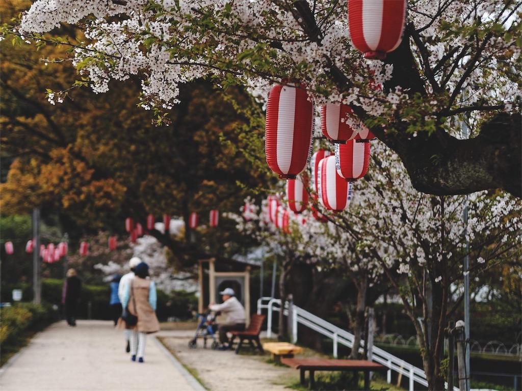 f:id:yuuki89:20190413152739j:image