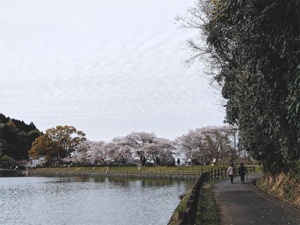 f:id:yuuki89:20190413152808j:image