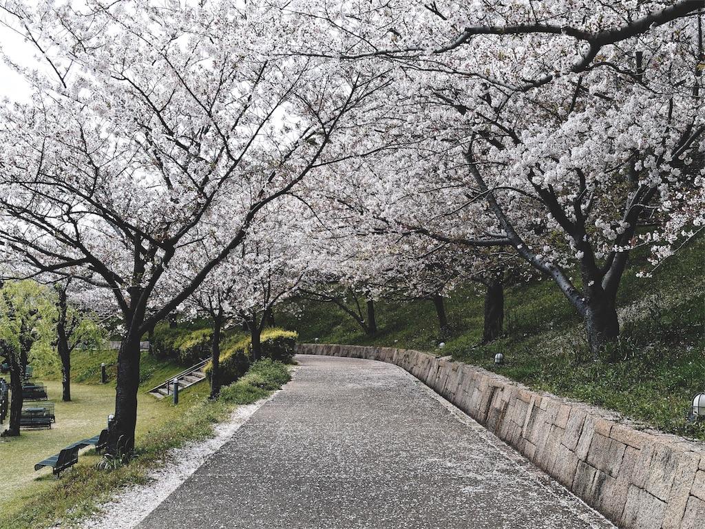 f:id:yuuki89:20190417201859j:image
