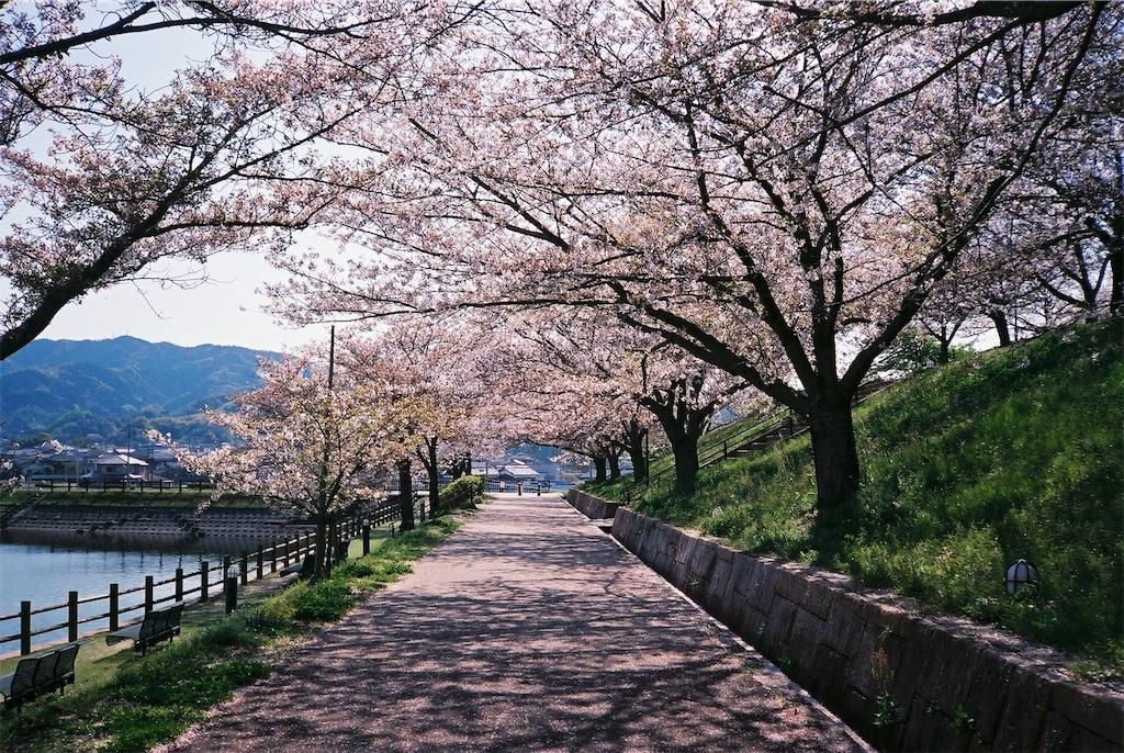 f:id:yuuki89:20190512200315j:image