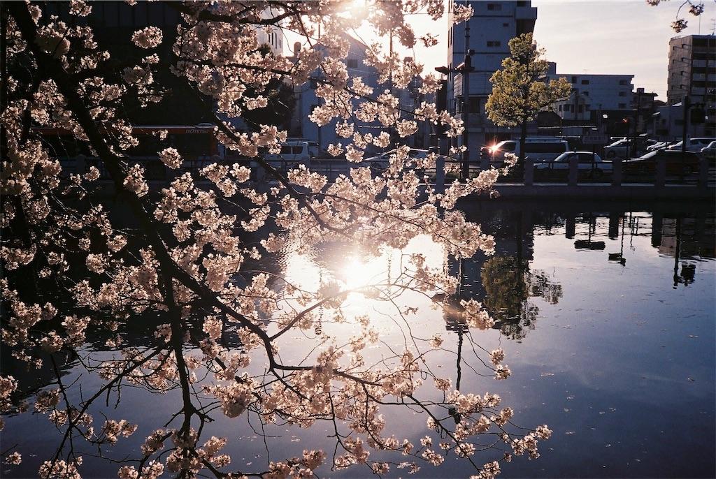 f:id:yuuki89:20190512200319j:image