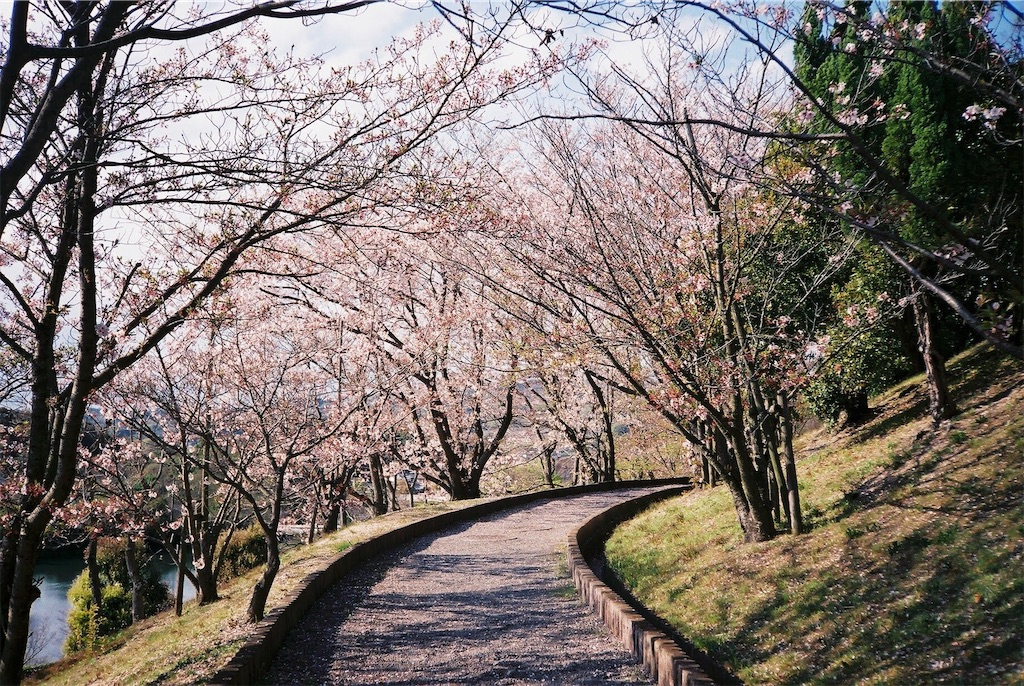 f:id:yuuki89:20190512200330j:image