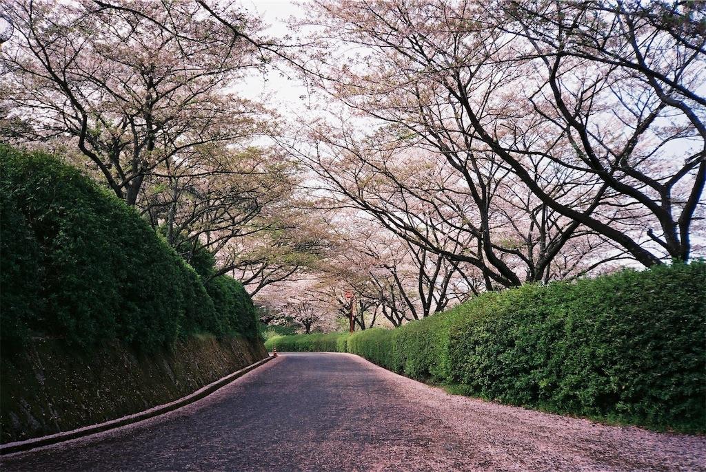 f:id:yuuki89:20190512200354j:image