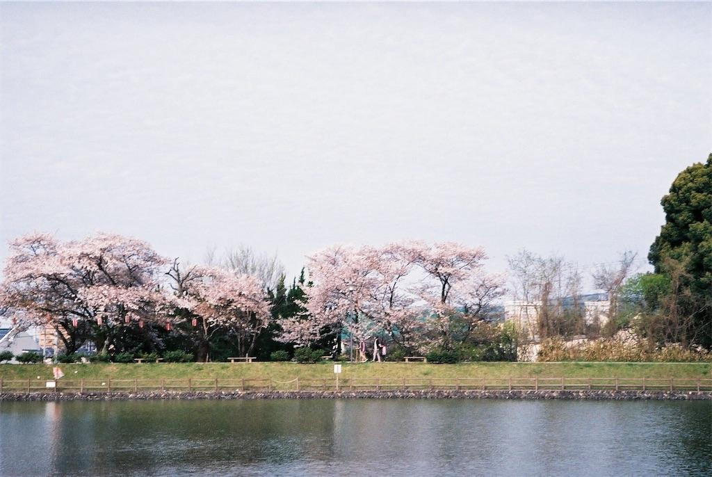 f:id:yuuki89:20190512200358j:image