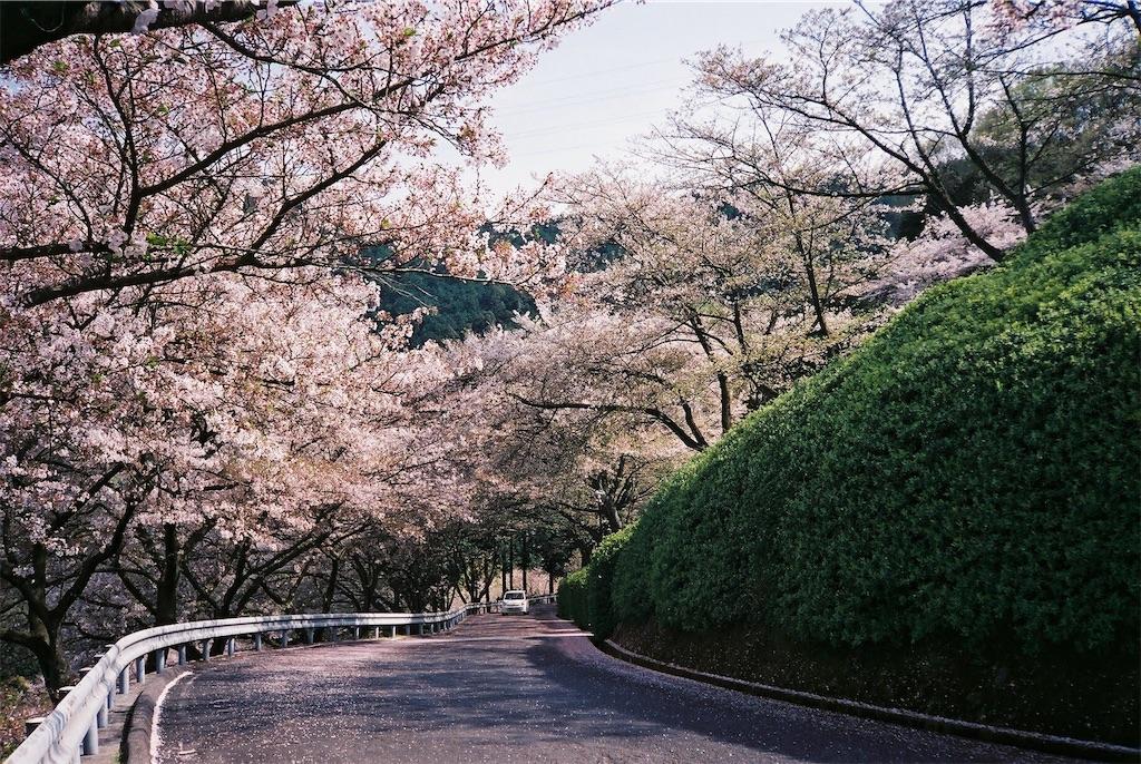 f:id:yuuki89:20190512200407j:image